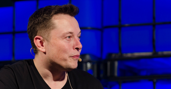 tunnel musk